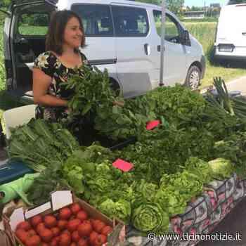 Villa Cortese, sabato 5 torna il mercato contadino di Slow Food - Ticino Notizie