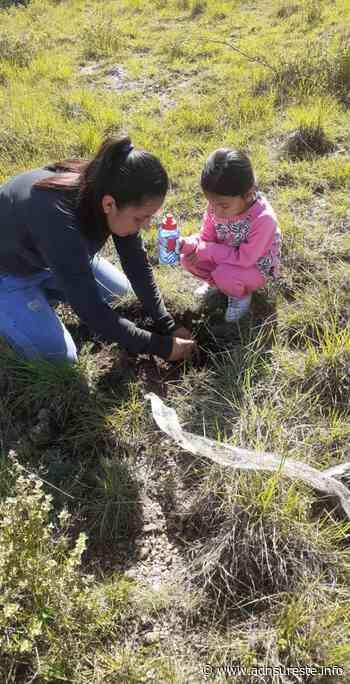"""Sembrando Futuro"" reforesta cerro en San Antonio de la Cal (13:00 h) - adnsureste.info"