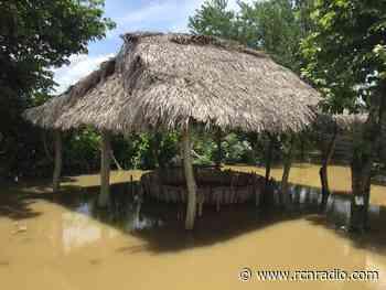 Desbordamiento del río San Jorge sigue causando estragos en Ayapel, Córdoba - RCN Radio
