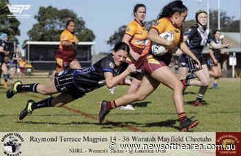 Around the grounds with Raymond Terrace Magpies and Ravens - News Of The Area