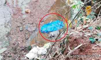 Tragedia en Saladoblanco, adulto mayor murió al caer a un precipicio - Noticias