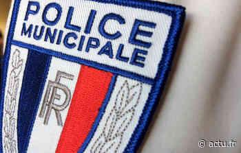 Val-de-Marne. La police municipale de Villeneuve-le-Roi et Ablon-sur-Seine lance un appel à témoins - actu.fr