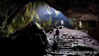 Auf den Spuren der Neandertaler: Grabungen in Einhornhöhle - Süddeutsche Zeitung