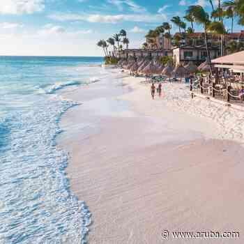 Welcome Back to Divi Aruba! - Aruba