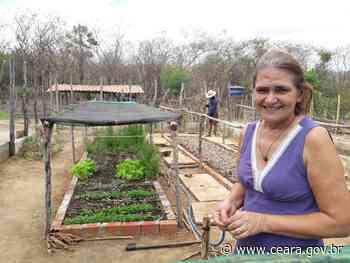 Mulheres de Reriutaba diversificam produção e geram de renda extra com cadernetas agroecológicas - Ceará