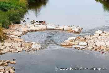 """Ein """"Whirlpool"""" in der Elz soll Fischen beim Wandern helfen - Emmendingen - Badische Zeitung"""