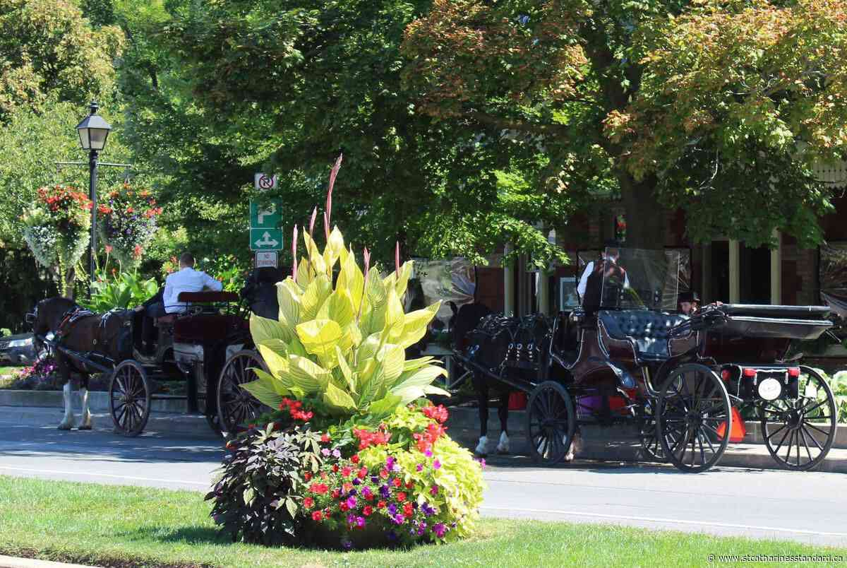 Sentineal Carriages gets new weekend location in Niagara-on-the-Lake - StCatharinesStandard.ca