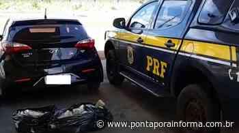 Em Ponta Pora, PRF apreende 48,6kg maconha - Ponta Porã Informa - Notícias de Ponta Porã - MS e Pedro Juan - Ponta Porã Informa