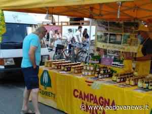 Campagna Amica, nuovi mercati a Monselice e Carmignano di Brenta - Padova News