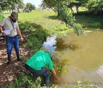 MiAmbiente investiga posible contaminación de la quebrada Cabuya en Ocú - En Segundos