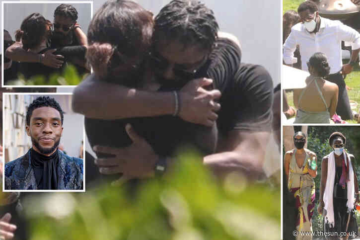 Michael B Jordan and Black Panther costars comfort Chadwick Boseman's wife at memorial for brave actor in Malibu