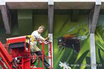 De natuur leeft op het beton in Voerendaal - De Limburger