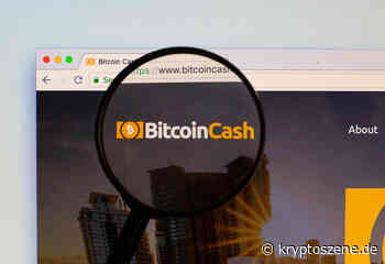 Bitcoin Cash Kurs Prognose: BCH/USD verliert 6 Prozent – Absturz auf $214 - Kryptoszene.de