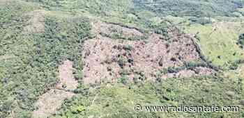 A la cárcel exalcalde de San Vicente de Chucurí por permitir la destrucción de la selva y afectar fuentes hídricas - Radio Santa Fe