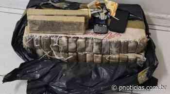 Polícia apreende, em Salvador, 30 kg de maconha que iriam para Itaparica - PNOTÍCIAS