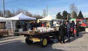 Mercato contadino sperimentale a Villa Cortese ogni primo sabato del mese - malpensa24.it