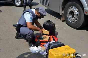 Passageiro de ônibus é preso em Pirassununga com 15 tabletes de maconha dentro de mala - G1