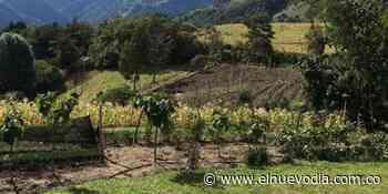 Con acción popular Personería busca llevar agua a la vereda Potrero Grande - El Nuevo Dia (Colombia)