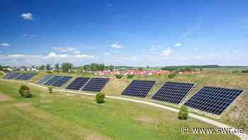 Solar-Stadt Crailsheim schützt Insekten | Heilbronn | SWR Aktuell Baden-Württemberg | SWR Aktuell - SWR