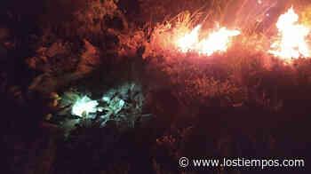 Incendio afectó 103 hectáreas de área forestal en Mizque - Los Tiempos