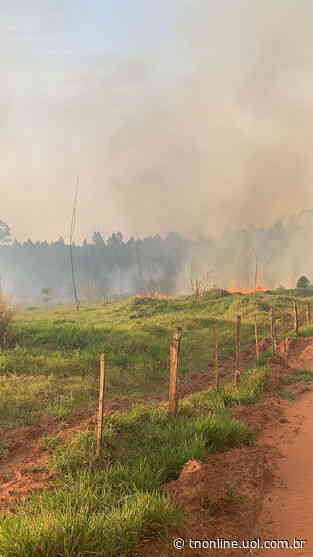 Bombeiros atendem incêndio na estrada entre Astorga e Sabáudia - TNOnline - TNOnline