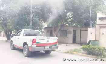 Realizan fumigación en sectores de Allende [Coahuila] - 24/05/2020 - zocalo.com.mx