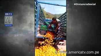 Chanchamayo: Agricultor de Perené arrojó sus frutas a la carretera por pérdida de inversión - América Televisión