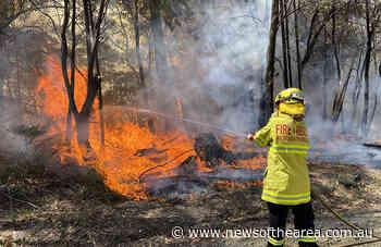 Raymond Terrace Fire and Rescue Captain urges local to prepare for bushfire season - News Of The Area