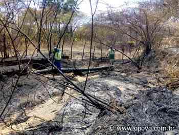 Incêndio afeta adutora e Reriutaba ficará sem fornecimento de água nesta segunda - O POVO