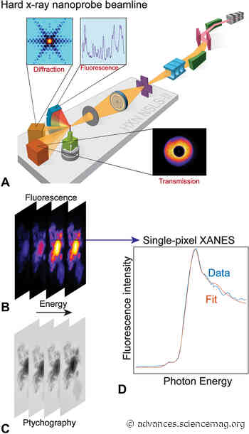High-sensitivity nanoscale chemical imaging with hard x-ray nano-XANES - Science Advances