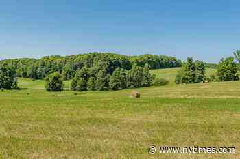 Rolling Hills Farm 14900 11th Concession Road, Schomberg, ON - Home for sale - The New York Times
