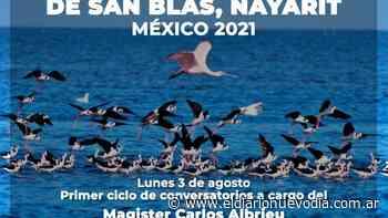 Rio Gallegos será parte del Festival Internacional de Aves Playeras Migratorias 2021 de México - El Diario Nuevo Dia