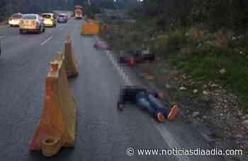Triple asesinato perpetrado entre Cajibío y El Tambo, Cauca - Noticias Día a Día