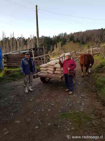 Pequeños agricultores de proyecto FIC de Santo Tomás Osorno son capacitados para instalación y manejo de viñedos - Radio Sago