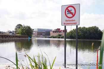 Waterkwaliteit in Houtdok wordt vanaf nu gemeten: zal zwemmen er ooit mogen?