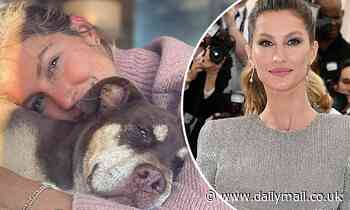 Gisele Bundchen opens up about her struggles with anxiety and panic attacks - Daily Mail