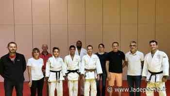 Saint-Orens-de-Gameville. Budokan judo : un comité directeur élargi - ladepeche.fr