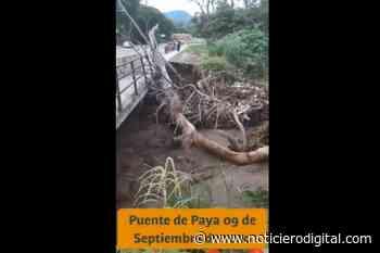 Río Paya en Aragua derrumbó parte de un puente tras subir su cauce también - Noticiero Digital