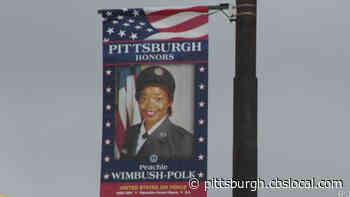 Banners Honoring Black Veterans On Display In Hill District