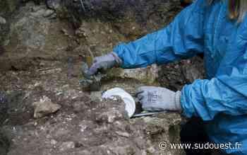 Saint-Perdon (40) : soirée archéologique sur les dernières fouilles dans la vallée de la Midouze - Sud Ouest