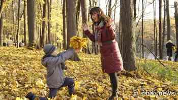 Herbstferienprogramm für Bad Schwartau steht fest - Stodo News