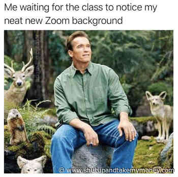 Me Waiting For The Class To Notice My Neat New Zoom Background – Meme