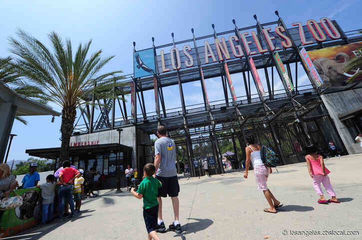 Poor Air Quality Prompts 2-Day Closure Of Los Angeles Zoo