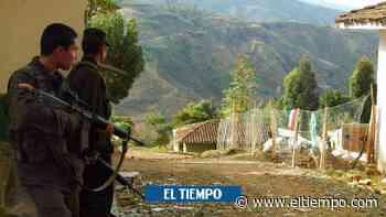 Autoridades indígenas denuncian abuso policial contra menor en Cauca - El Tiempo