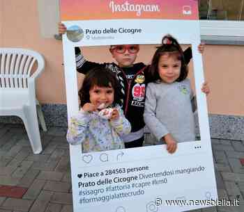 Porte aperte alla fattoria Prato delle Cicogne dell'azienda Sisagro di Mottalciata - newsbiella.it