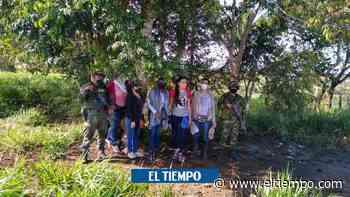 El emotivo regreso a casa de familia desplazada por paramilitares - El Tiempo