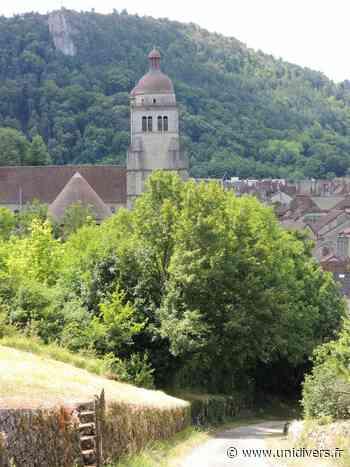 Montez au clocher de la collégiale Saint Hippolyte Collégiale Saint Hippolyte Poligny - Unidivers