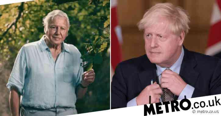 Sir David Attenborough's extinction documentary begs government to take action in wake of coronavirus