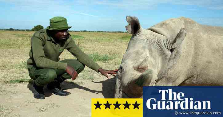 Extinction: The Facts review – a heartbreaking warning from David Attenborough