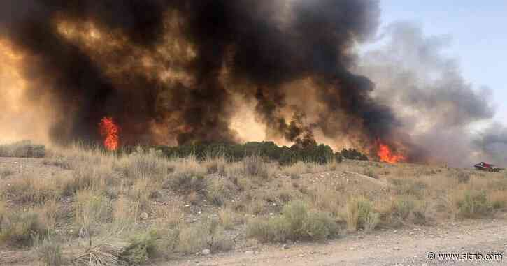 Wildfire burns about 200 acres near Santaquin, but doesn't force evacuations